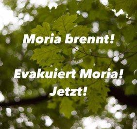 Text / Baum